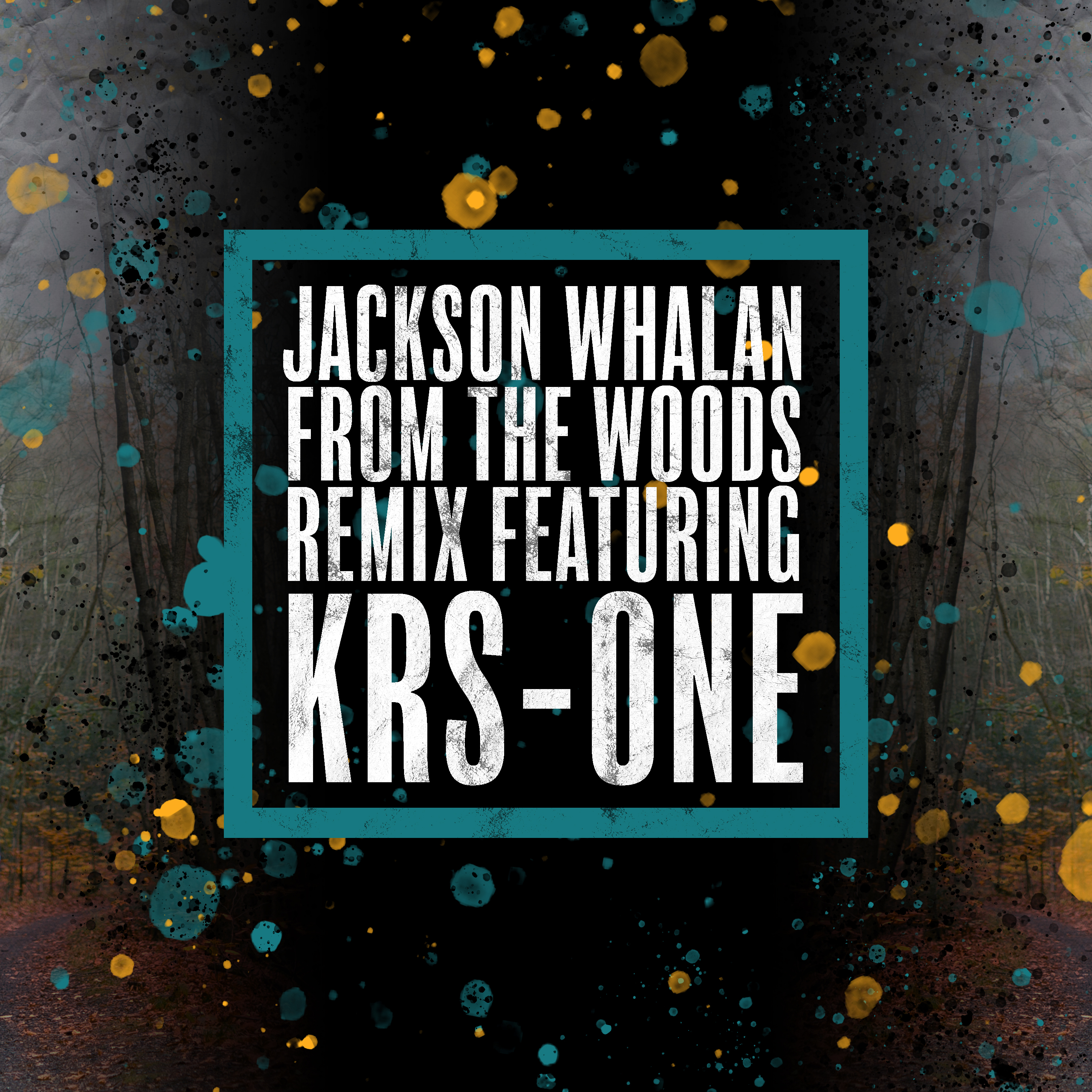 From the Woods (feat. KRS-One) [Remix] Image