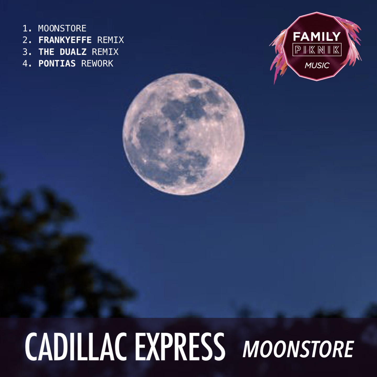 Moonstore EP Image