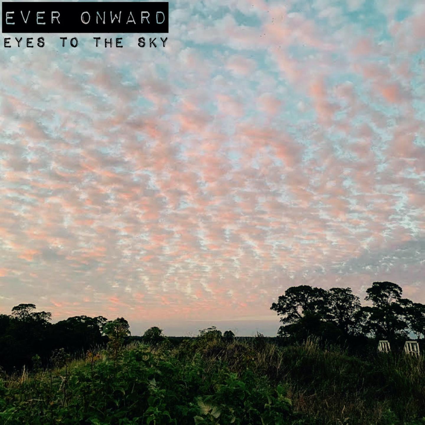 Ever Onward - Eyes to the Sky Image