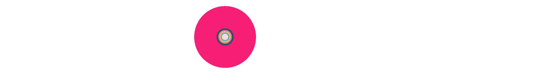 V I N Y L Logo