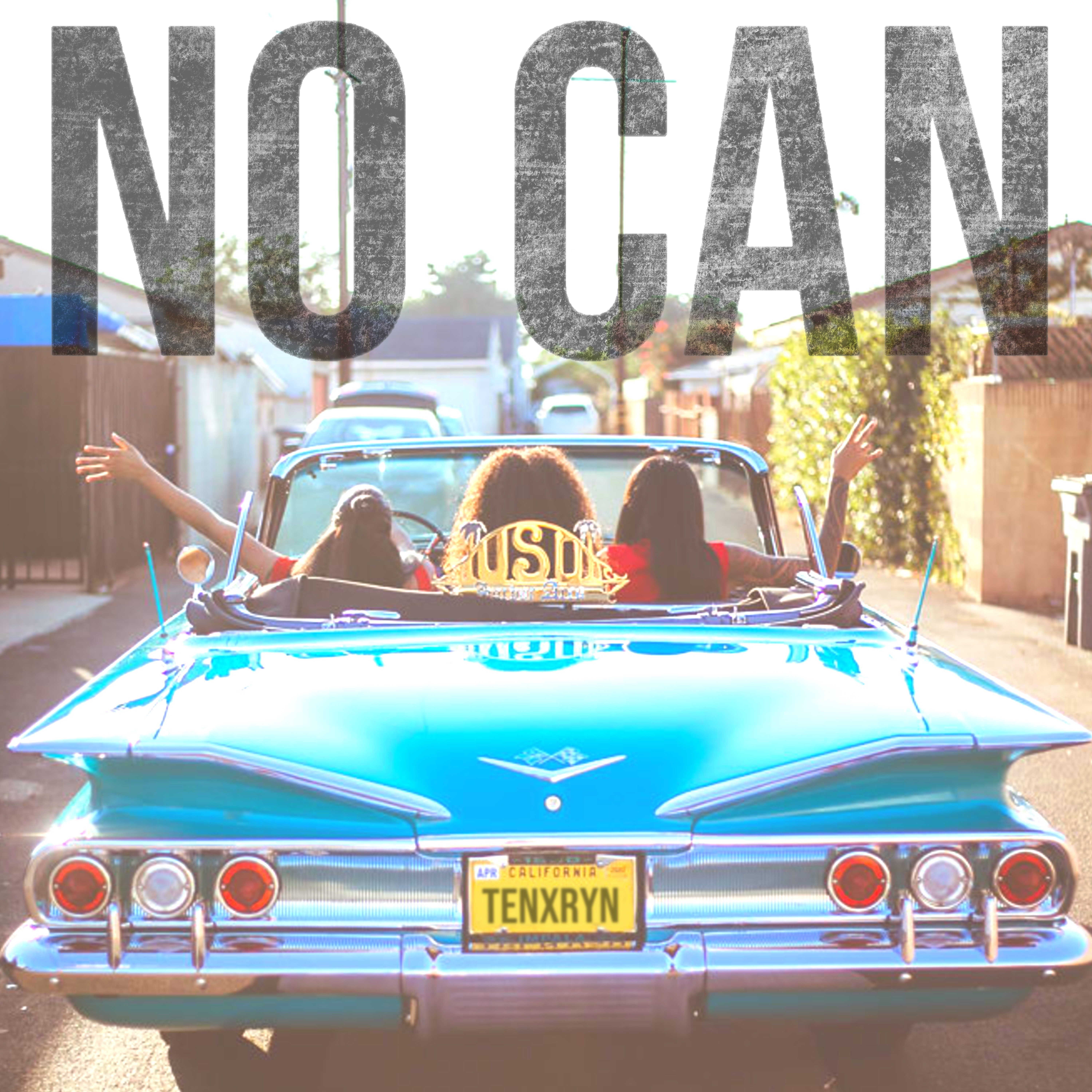 No Can (feat. RYN) - Single by Tenelle  Image