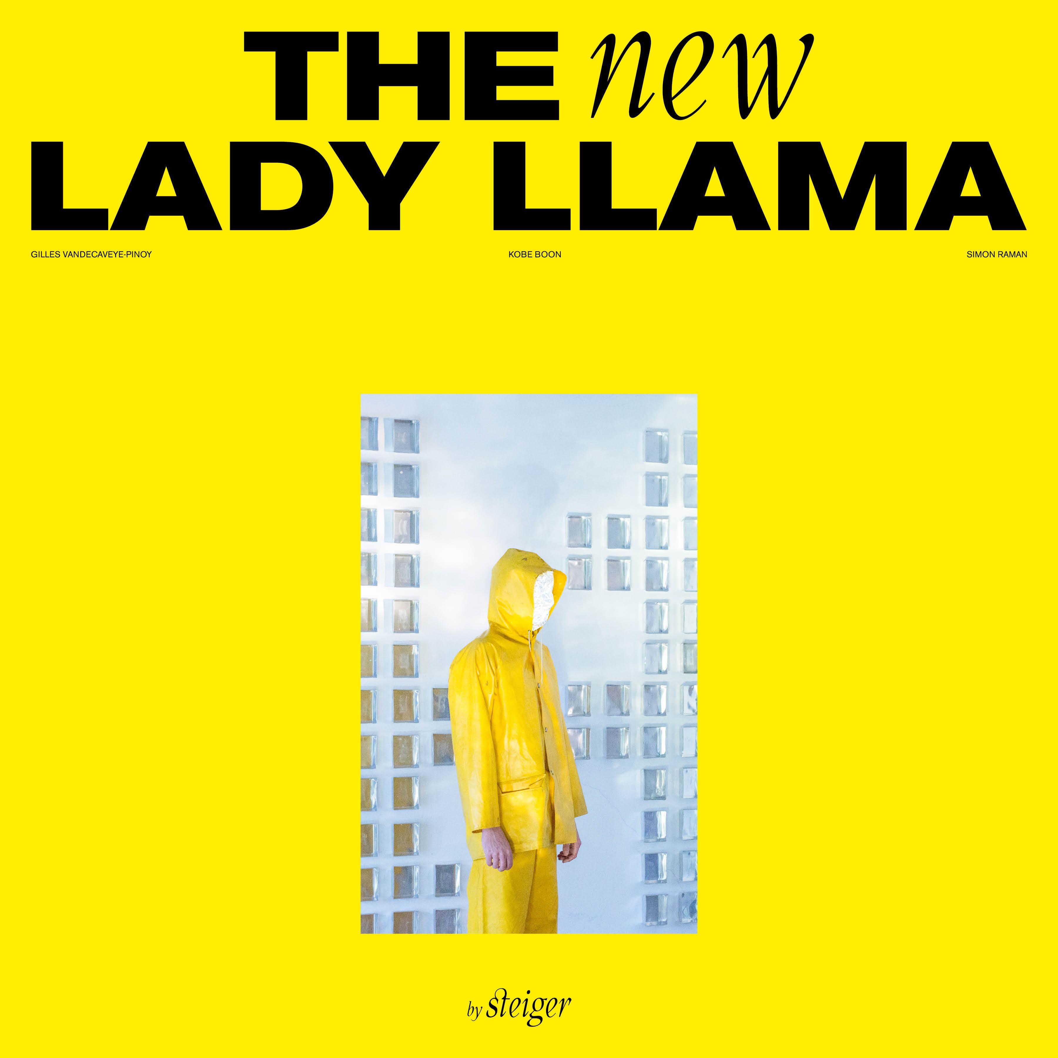 The New Lady Llama Image