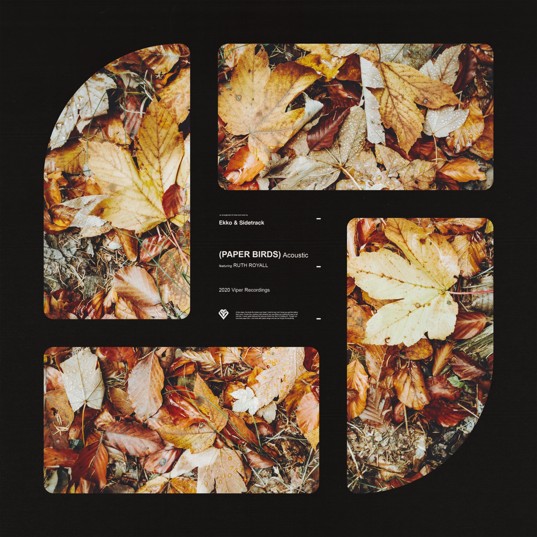 Ekko & Sidetrack ft. Ruth Royall - Paper Birds (Acoustic) Image