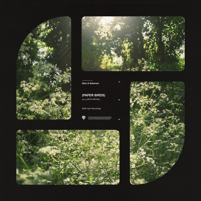 Ekko & Sidetrack ft. Ruth Royall - Paper Birds Image