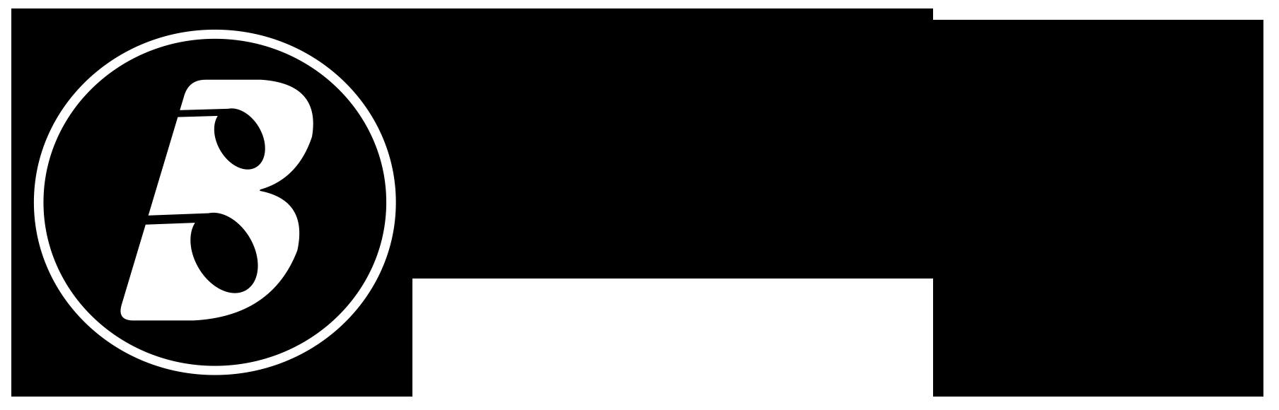 Boom play Logo