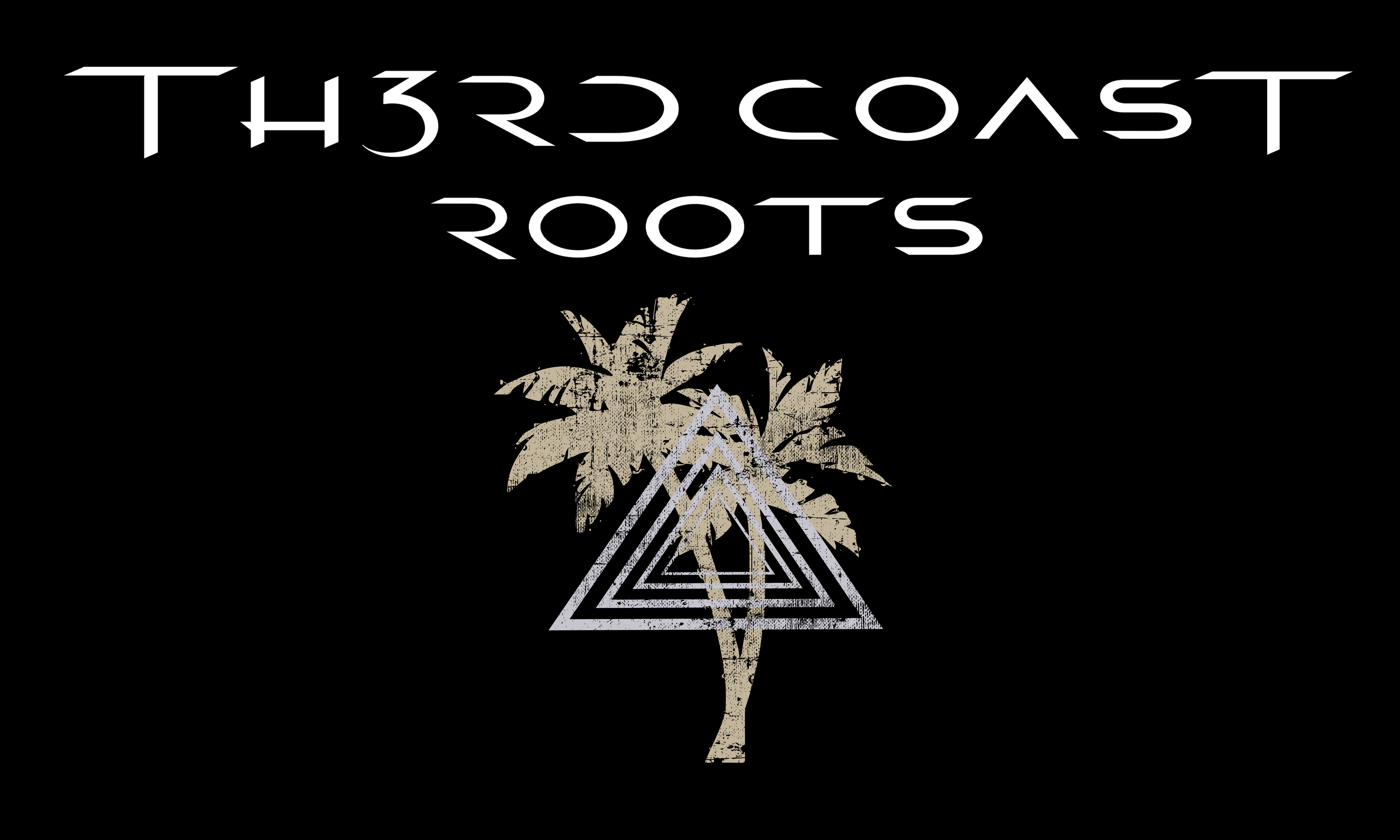 Th3rd Coast Roots Image