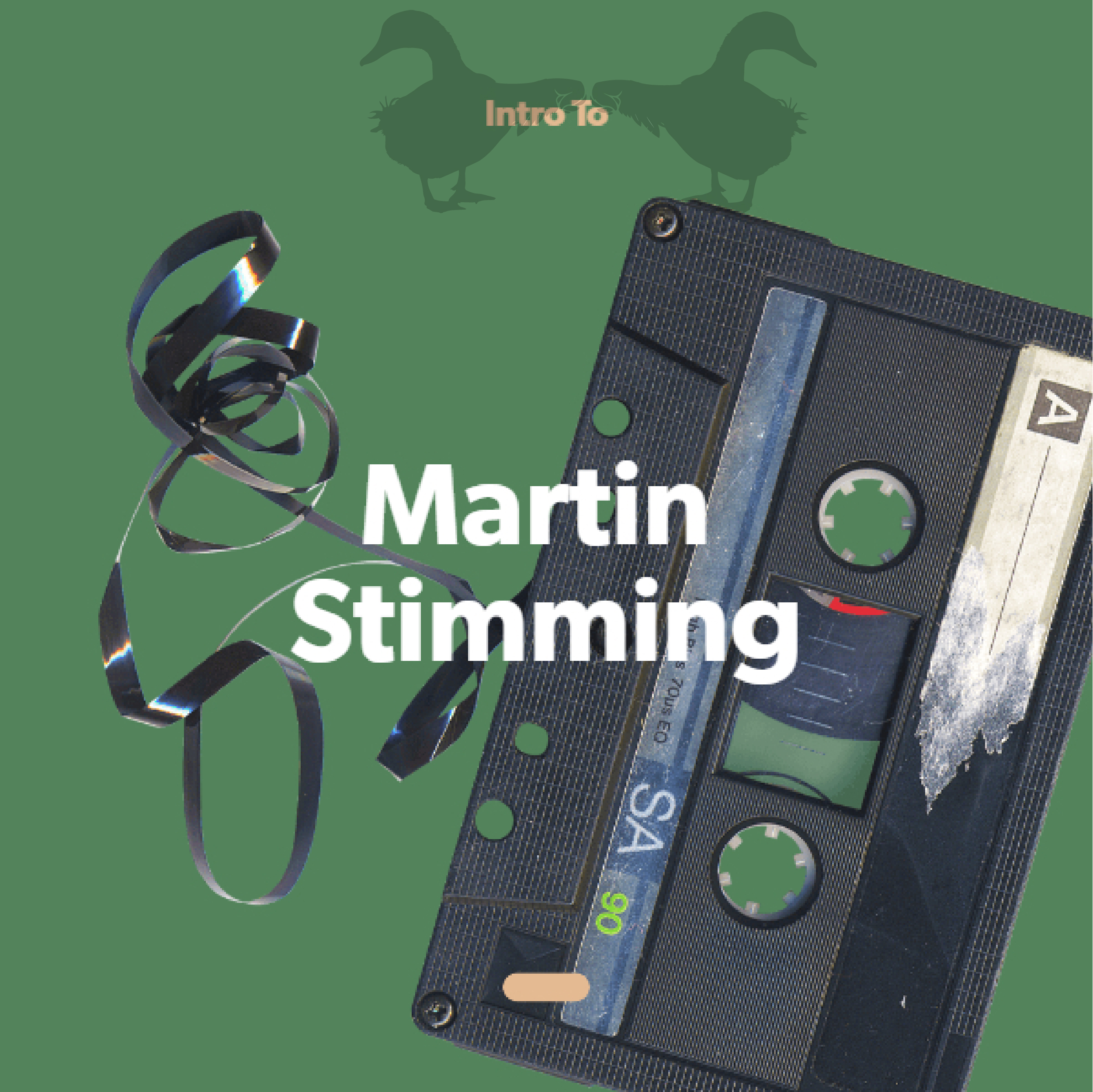 Intro to Martin Stimming Image