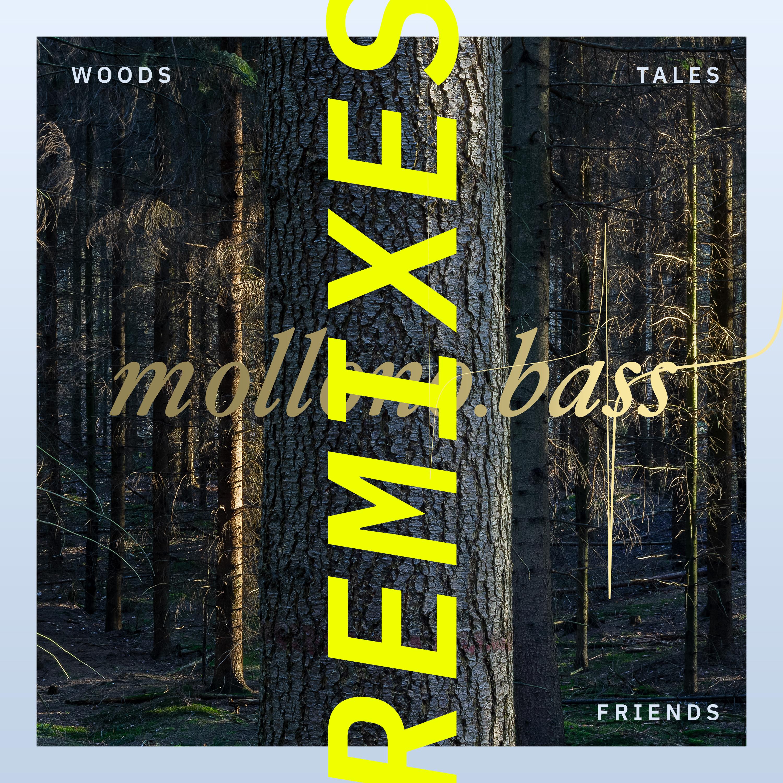 Mollono.Bass, Matan Caspi, Einmusik - Woods, Tales & Friends Remixes - Part One (3000° Grad 089) Image