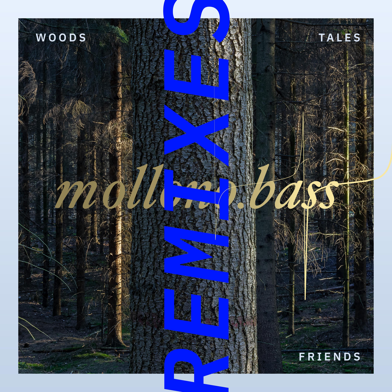 Mollono.Bass, Super Flu, Stephan Zovsky -  Woods, Tales & Friends Remixes - Part Two (3000° 093) Image