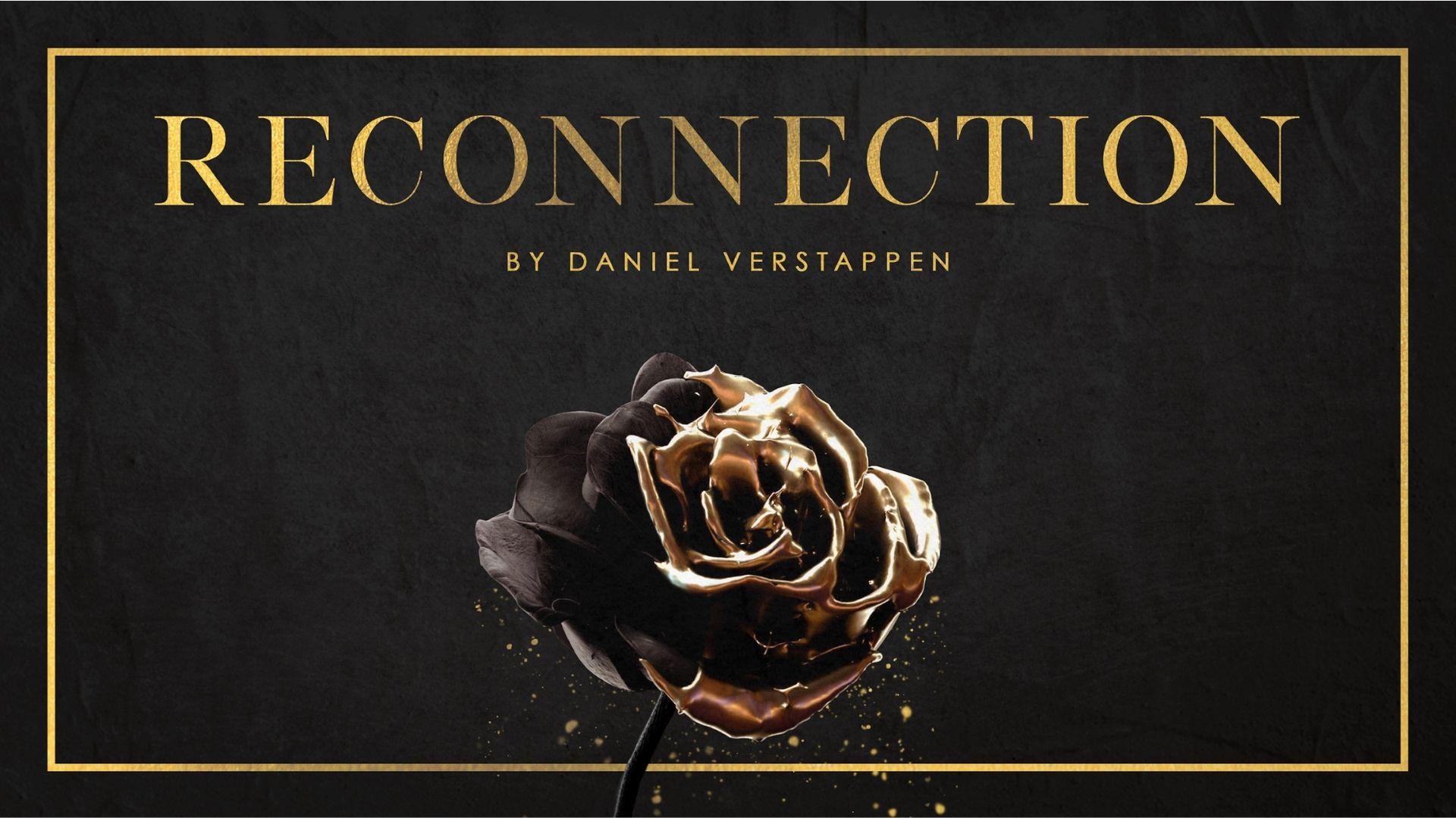 Online Store Daniel Verstappen Logo