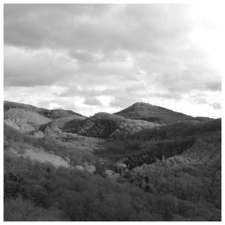 Durch den schönen Harz Image