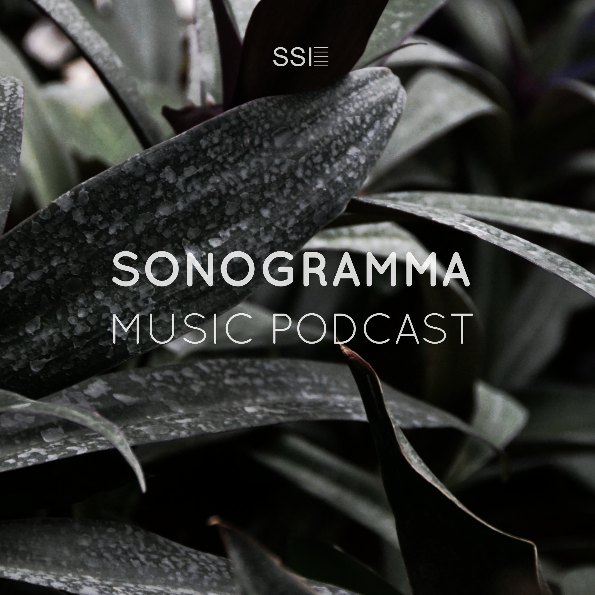 Sonogramma Music Podcast Image