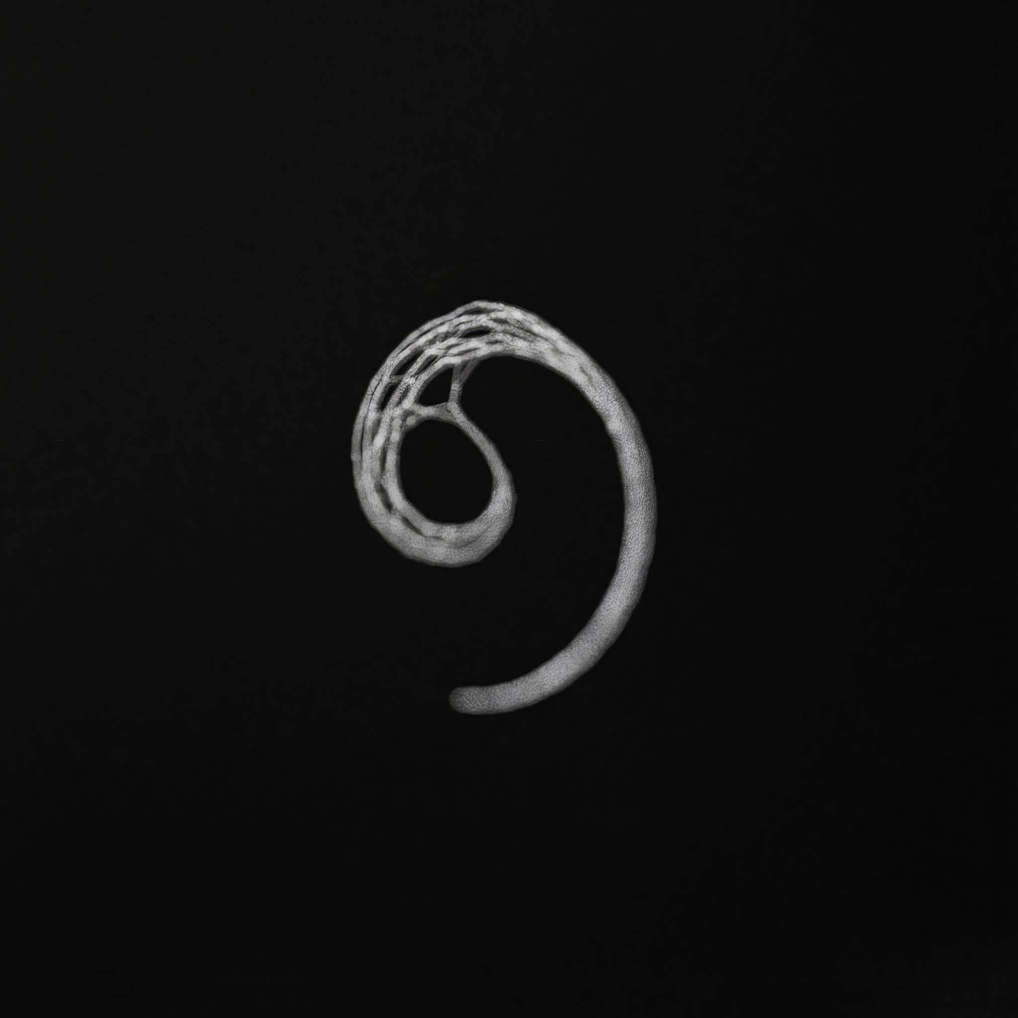 Empty Phenomena Rolling On Image