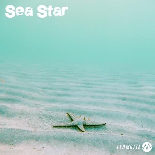 Sea Star Image