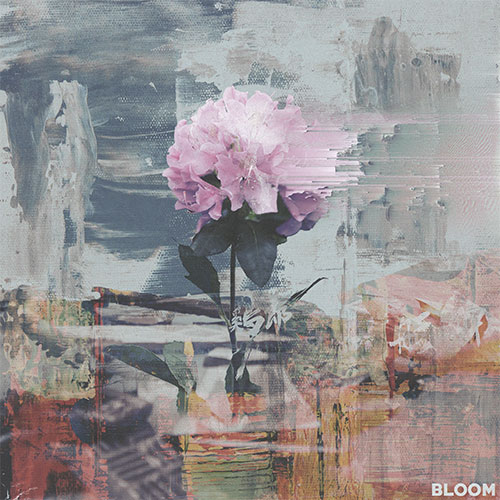 Chapter || : Bloom Image