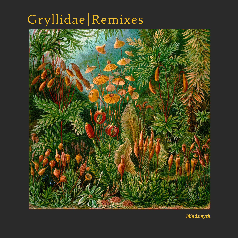 Gryllidae Remixes Image