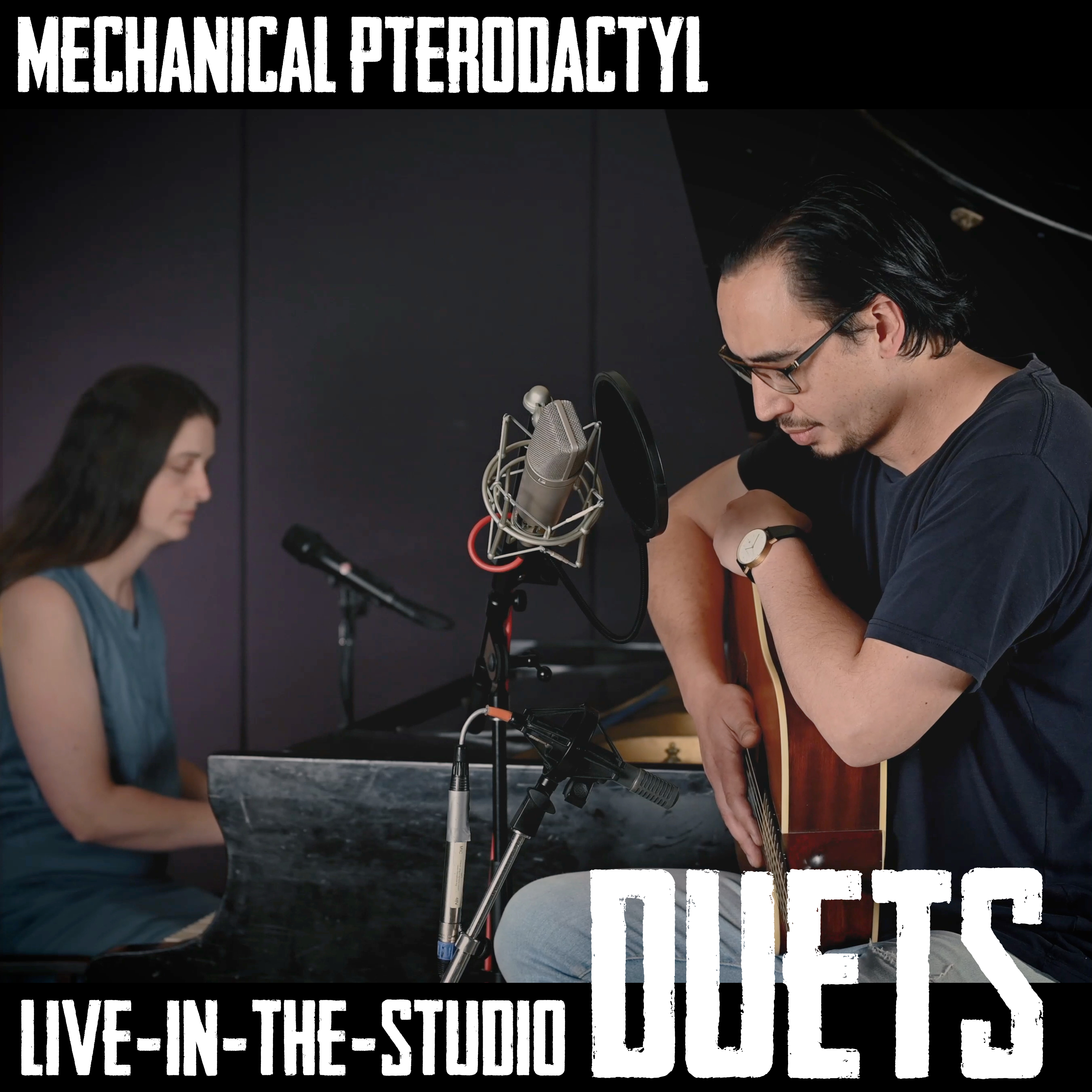 Duets (Live-in-the-Studio) Image