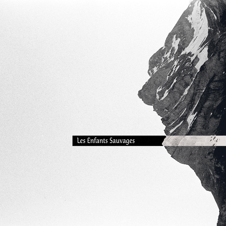 """"""" L E S """" Album Image"""