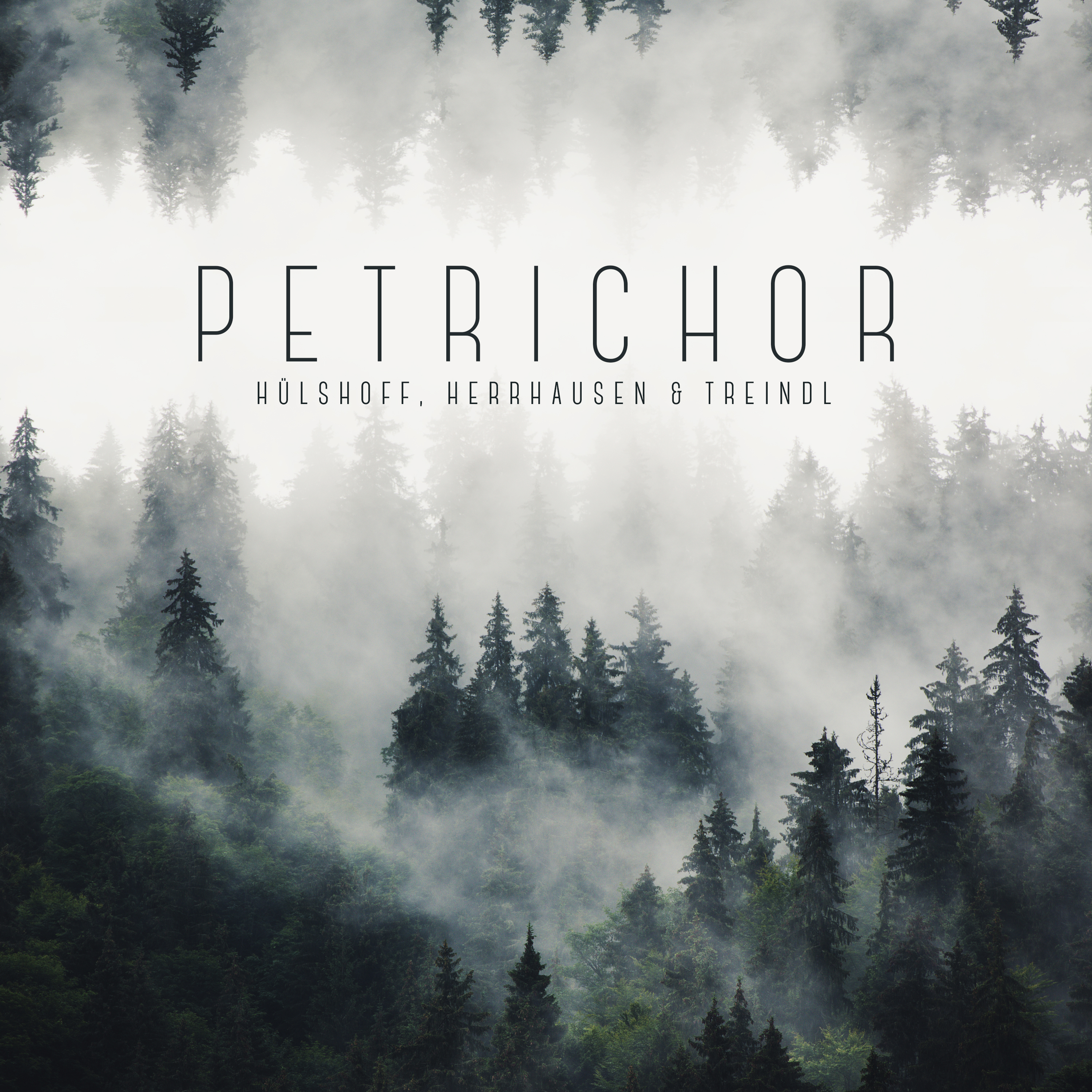 """""""Petrichor"""" from Acker Records  Image"""