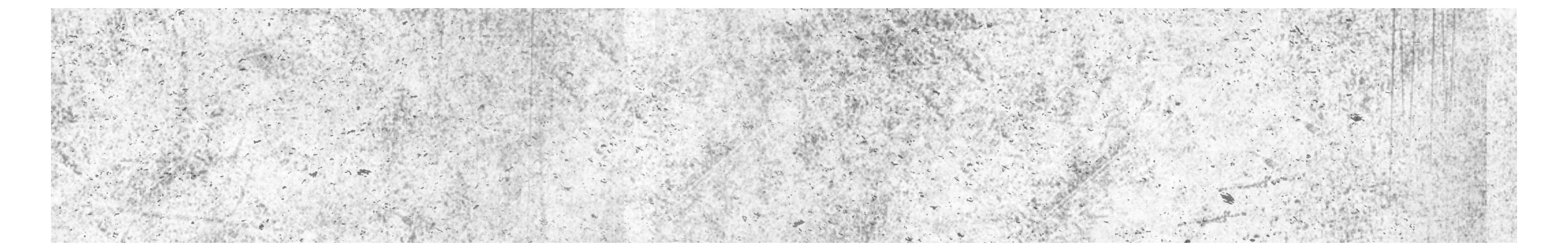 Offizieller Shop Logo