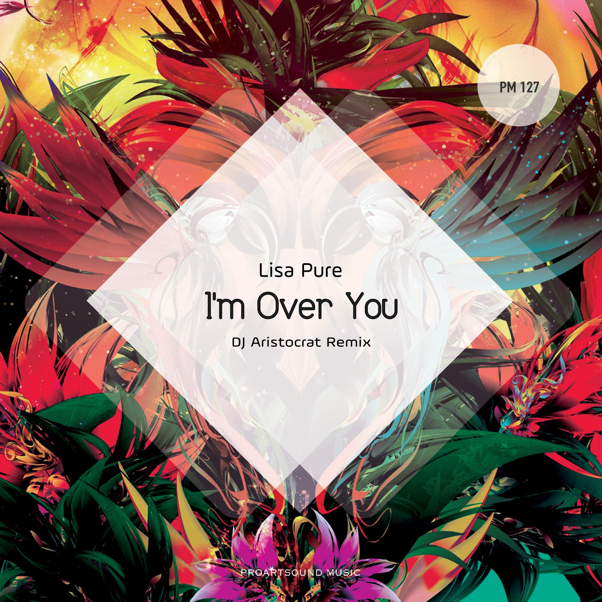I'm Over You (DJ Aristocrat Remix) Image