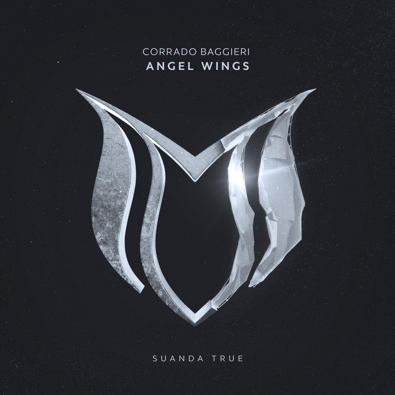 Angel Wings  Image