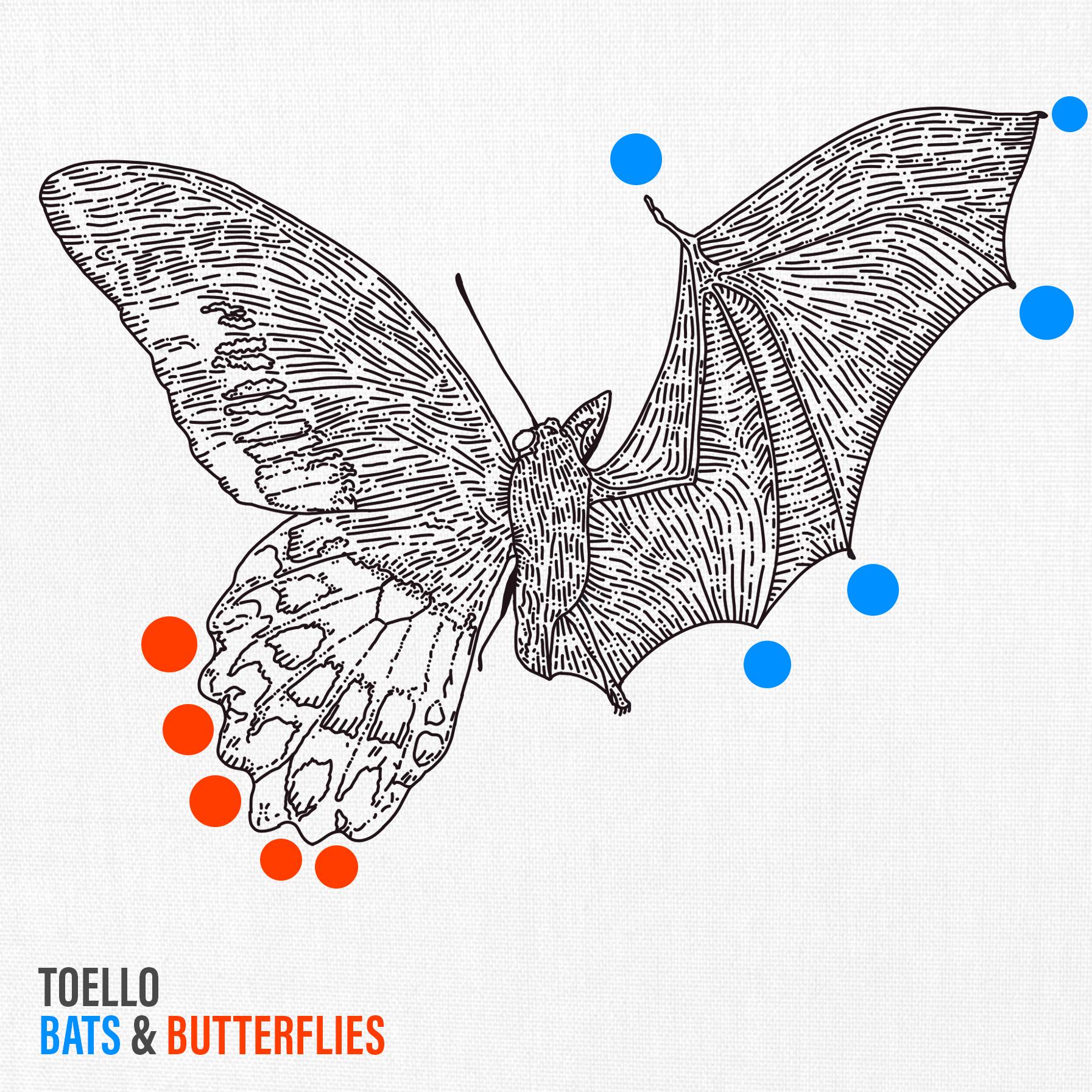 Bats & Butterflies Image